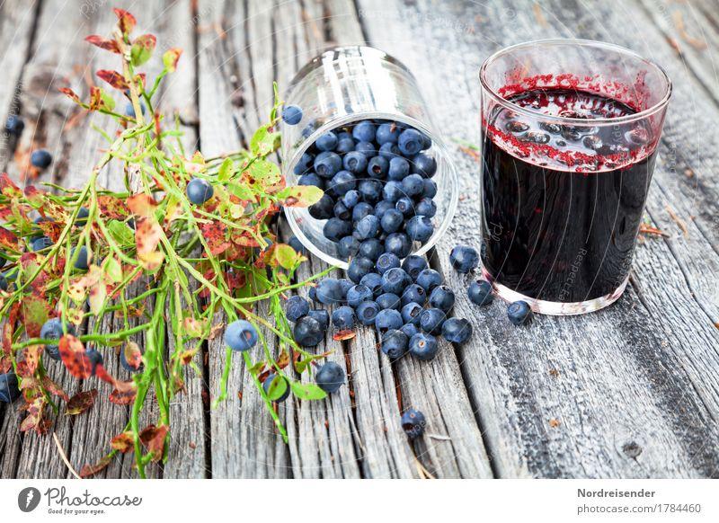 Blaubeeren Natur Pflanze Sommer Gesunde Ernährung Herbst Holz Lebensmittel Frucht Freizeit & Hobby frisch Glas süß trendy Bioprodukte Ernte