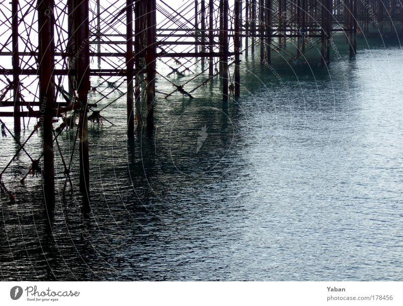 Brighton Pier Wasser alt Meer Architektur Küste glänzend Ausflug Tourismus Nordsee Club historisch Stahl Rost Moos Sightseeing Sehenswürdigkeit