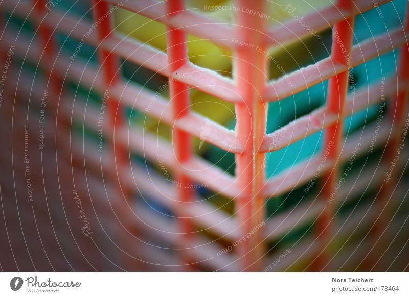 #### schön Garten rosa Ordnung frisch neu Bekleidung Sauberkeit weich Kunststoff trocken Kasten Duft hängen Gitter trocknen