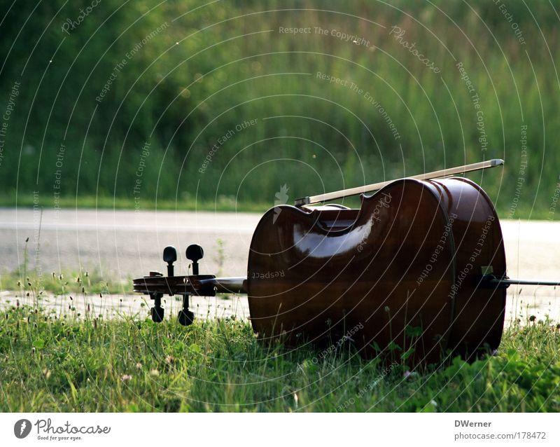 Das Violoncello Farbfoto Außenaufnahme Textfreiraum oben Tag Licht Musik Geige Gras Garten Park Wiese Straße Spielen Bildung Freude Stil Stimmung Cello