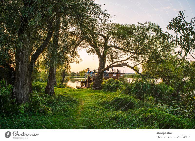 Mood. Mensch Natur Ferien & Urlaub & Reisen Pflanze Sommer Wasser Baum Landschaft Erholung Erwachsene Umwelt Menschengruppe Schwimmen & Baden Freundschaft