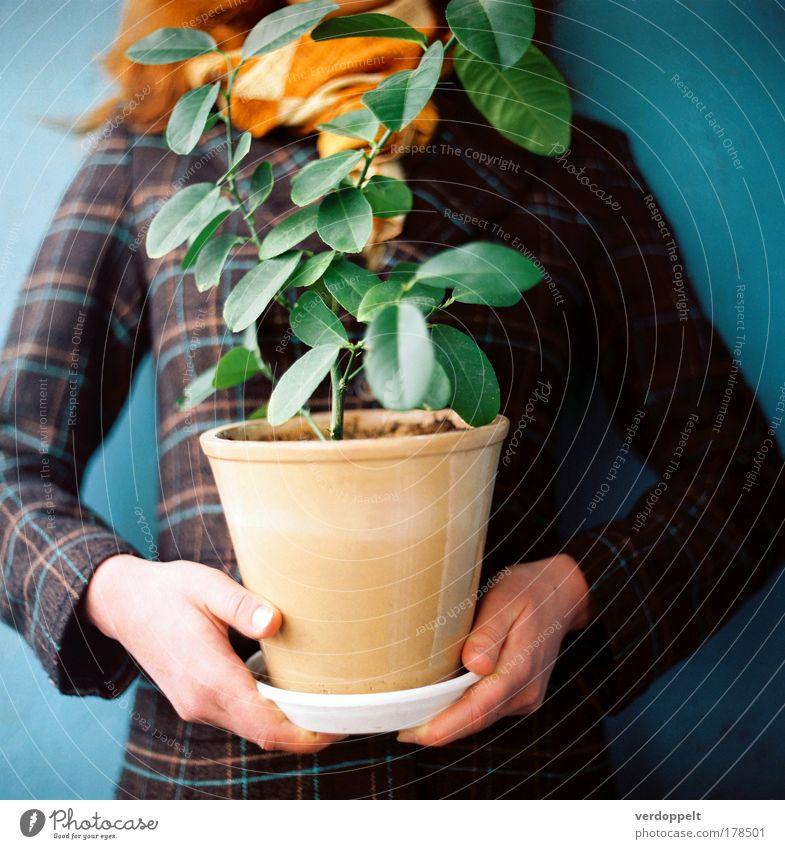 @{->--- Farbfoto mehrfarbig Innenaufnahme Muster Strukturen & Formen Licht Kontrast Stil Design heimwerken Garten Dekoration & Verzierung androgyn