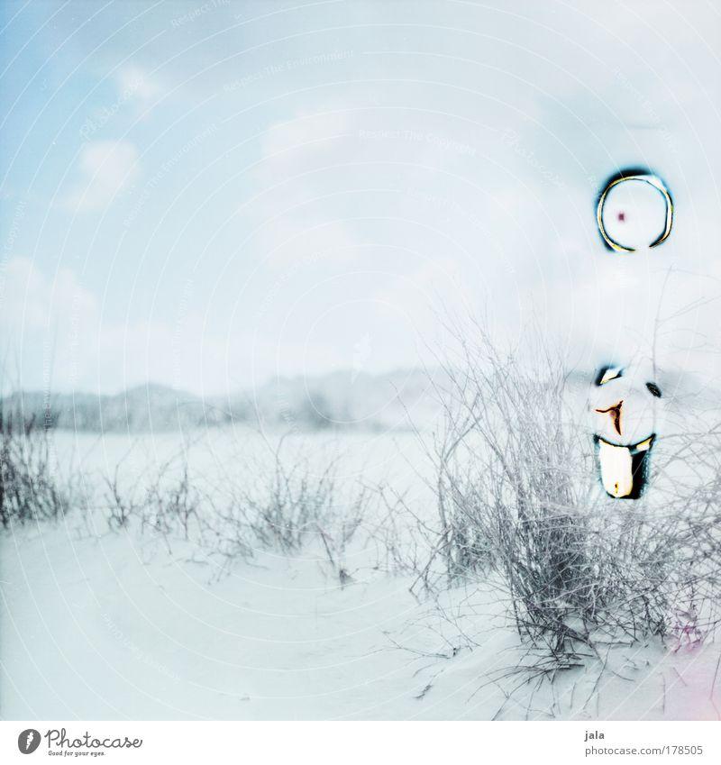 Dünenlandschaft Farbfoto Gedeckte Farben Außenaufnahme Menschenleer Tag Licht Natur Landschaft Sand Himmel Wolken Pflanze Hügel Küste Strand Nordsee Insel hell