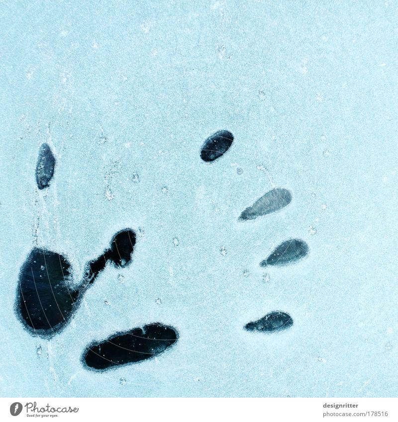 Eiskaltes Händchen Hand Winter Schnee Wärme Wetter Haut Finger Klima Frost Vergänglichkeit Spuren Symbole & Metaphern Zeichen gefroren