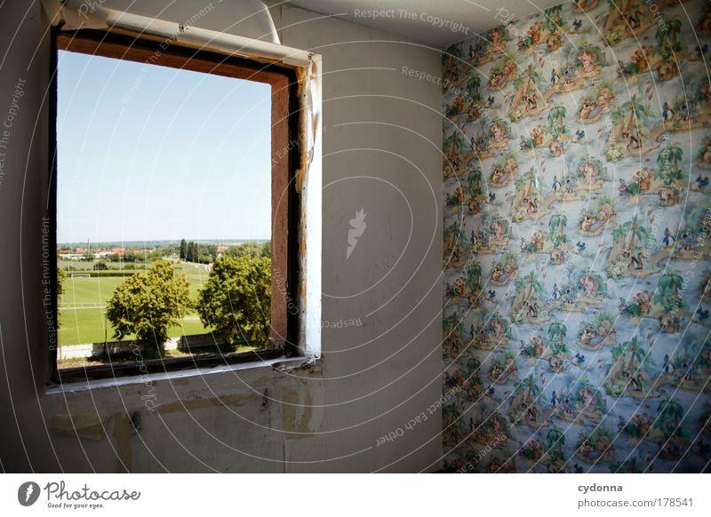 Herausgewachsen Natur ruhig Einsamkeit Leben Fenster träumen Traurigkeit Landschaft Wohnung Perspektive Zukunft Ende Wandel & Veränderung