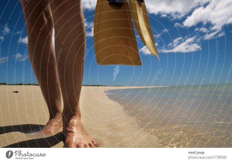 Der perfekte Strand Mensch Meer blau Strand gelb Fuß Beine tauchen Australien Fernweh Schwimmhilfe Wassersport Schnorcheln West Australien