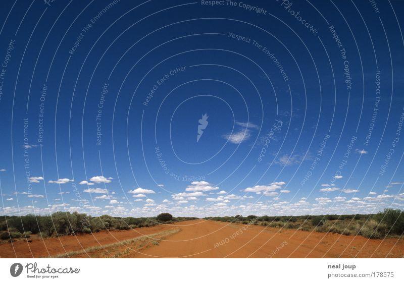 Next curve - 55km Farbfoto Außenaufnahme Menschenleer Ferien & Urlaub & Reisen Erde Himmel Horizont Buschland West Australien Sandpiste fahren frei Einsamkeit