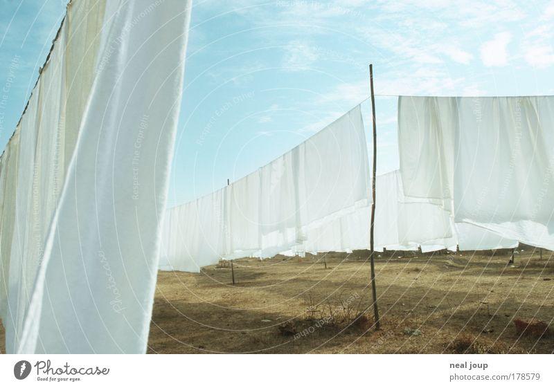 Frisch wie der Weiße Riese weiß Wiese Armut Umwelt einfach Asien Sauberkeit Duft Indien Wäsche waschen trocknen Erneuerbare Energie Goa