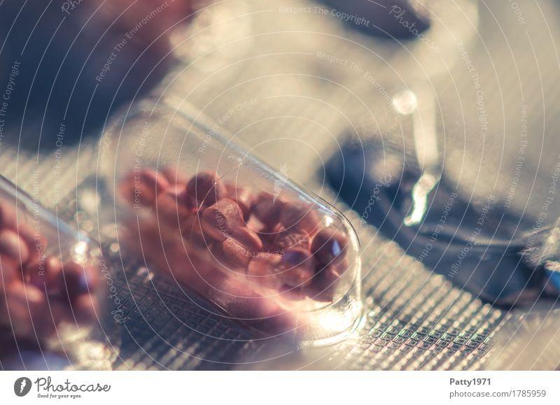 Kapsel in Blisterpackung Wärme Gesundheit Gesundheitswesen rosa rund Medikament Schmerz Verpackung silber Tablette Pharmazie Drogensucht