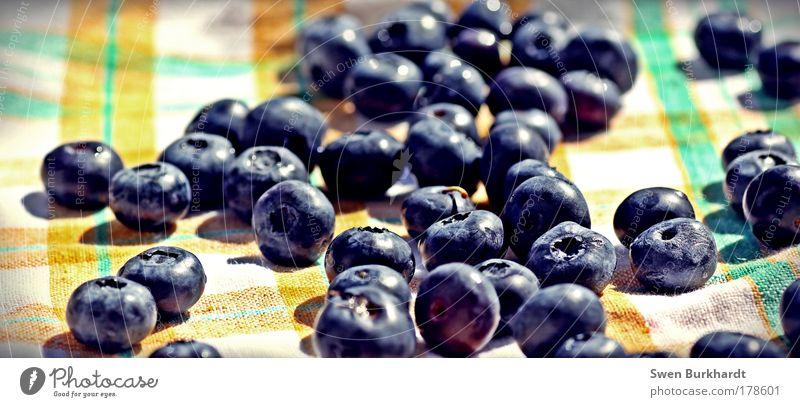 Kulturheidelbeere blau Bewegung klein Gesundheit Frucht natürlich Lebensmittel frisch Ernährung süß rund genießen Appetit & Hunger Lebensfreude lecker