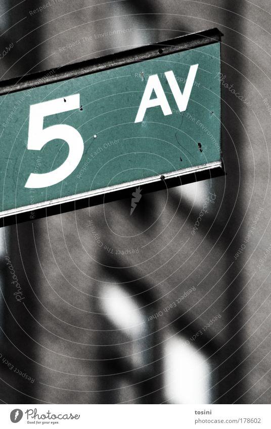 5 AV Stadt grün Sommer Ferien & Urlaub & Reisen Haus Straße Fenster grau Wege & Pfade Schilder & Markierungen Verkehr Tourismus USA Amerika reich
