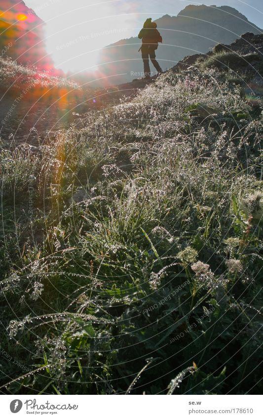 Morgenstund... Mensch Natur Sonne Sommer Einsamkeit Gras Berge u. Gebirge Freiheit Glück glänzend wandern laufen Tourismus Romantik Freizeit & Hobby Alpen