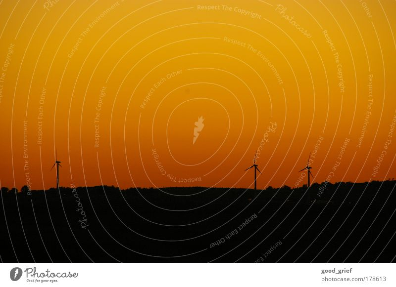 voll öko Natur Himmel Baum Landschaft Orange Umwelt Energie Energiewirtschaft neu Zukunft Technik & Technologie Klima Wissenschaften Windkraftanlage Sonnenuntergang drehen