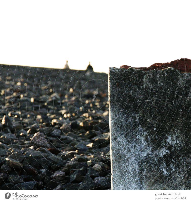 von stein zu stein Farbfoto Außenaufnahme Experiment Tag Abend Licht Kontrast Mensch maskulin 2 Stein Beton schuldig Zerstörung kaputt Buchenwald