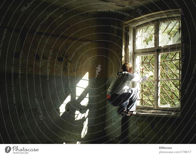 hinter Gittern Mensch Junger Mann Jugendliche 1 18-30 Jahre Erwachsene Ruine Fenster Stein kämpfen springen toben dunkel gruselig Neugier stark verrückt Gefühle