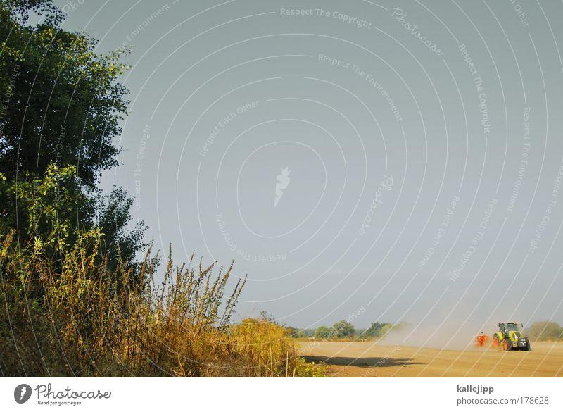 ackermann Farbfoto Außenaufnahme Textfreiraum oben Tag Licht Schatten Kontrast Arbeit & Erwerbstätigkeit Beruf Arbeitsplatz Umwelt Natur Landschaft Tier Erde