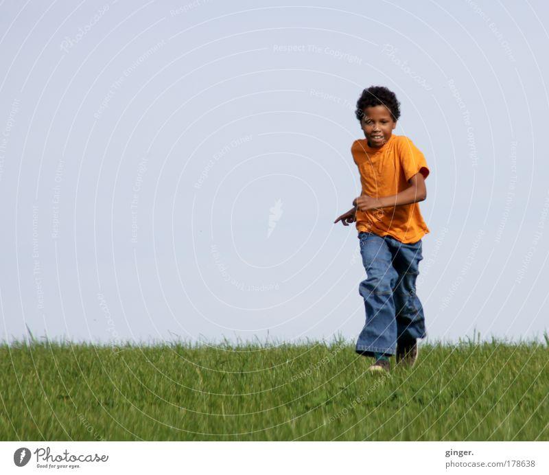 Entgegenkommen Sommer Mensch maskulin Kind Junge Kindheit Jugendliche 1 8-13 Jahre Natur Himmel Wolkenloser Himmel Frühling Schönes Wetter Gras Wiese T-Shirt