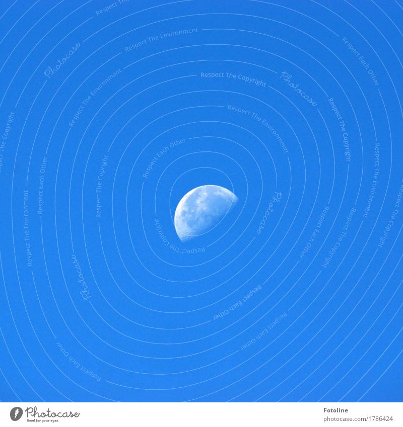 Luna Himmel Wolkenloser Himmel Mond hell blau weiß abnehmend zunehmend Mondschein Mondlandschaft Mondaufgang Farbfoto mehrfarbig Außenaufnahme Nahaufnahme