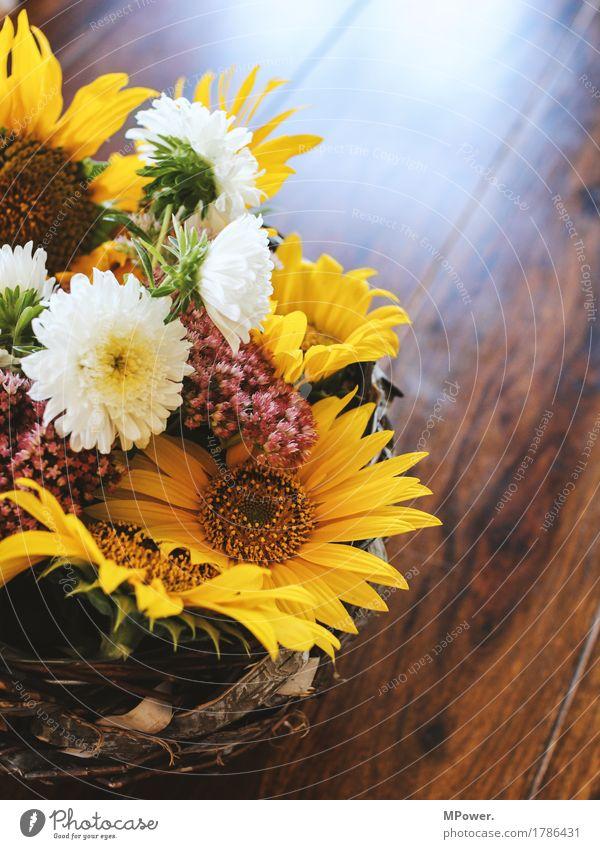 herbstdeko Herbst Herbstmarkt Dekoration & Verzierung Sonnenblume Blume Tisch Geschenk gelb mehrfarbig Blumenstrauß schön Duft