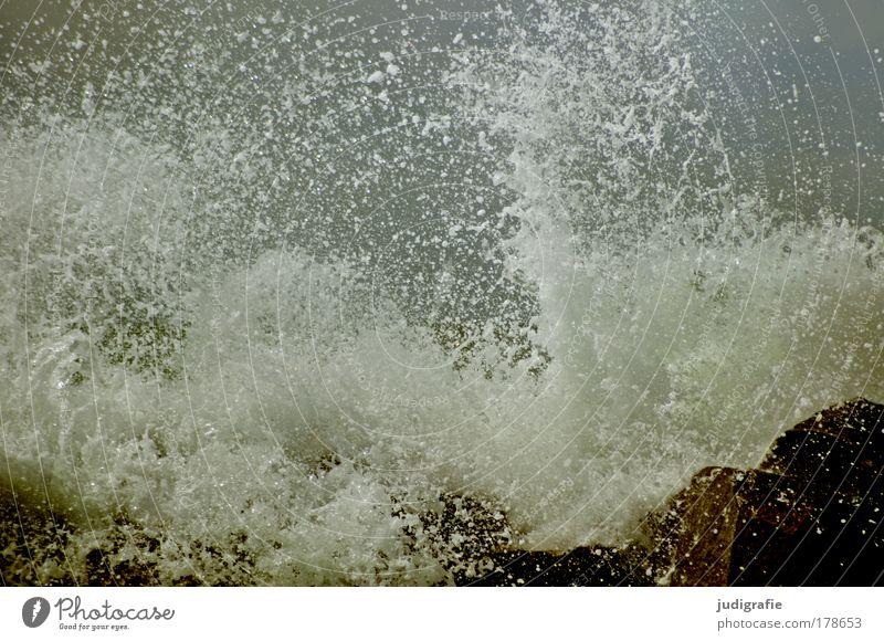 Gischt Farbfoto Außenaufnahme Tag Umwelt Natur Wasser Unwetter Sturm Wellen Küste Strand Ostsee Meer bedrohlich dunkel frisch wild Kraft kalt Vergänglichkeit