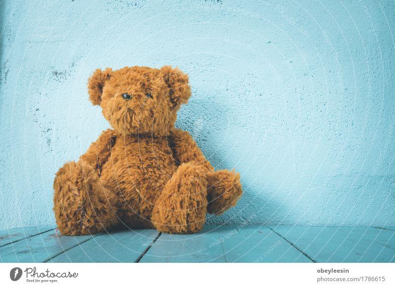 Teddybär Stil Freude Spielzeug Puppe Design Kunst Leben Farbfoto Nahaufnahme Textfreiraum rechts Tag Weitwinkel Blick in die Kamera