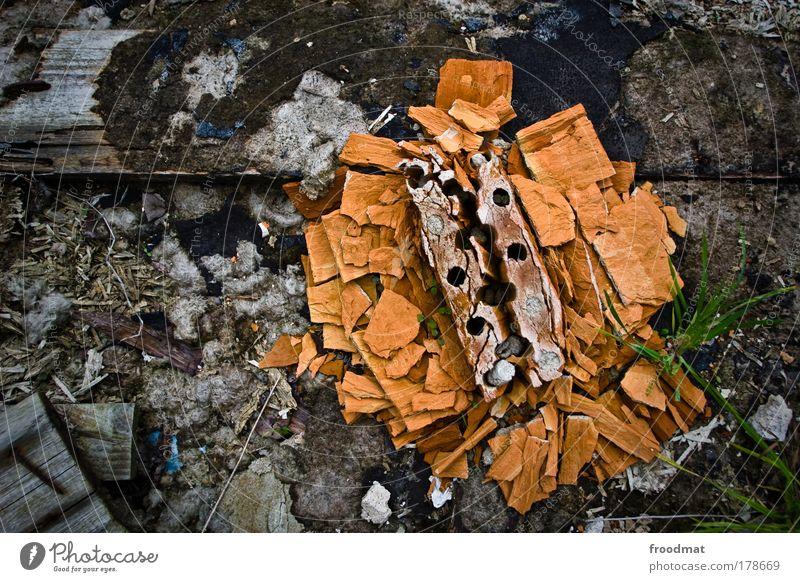 steinbruch alt Blume Erholung Stein Stimmung orange Zeit Kraft dreckig kaputt trist Wandel & Veränderung Macht Dekoration & Verzierung Vergänglichkeit einfach