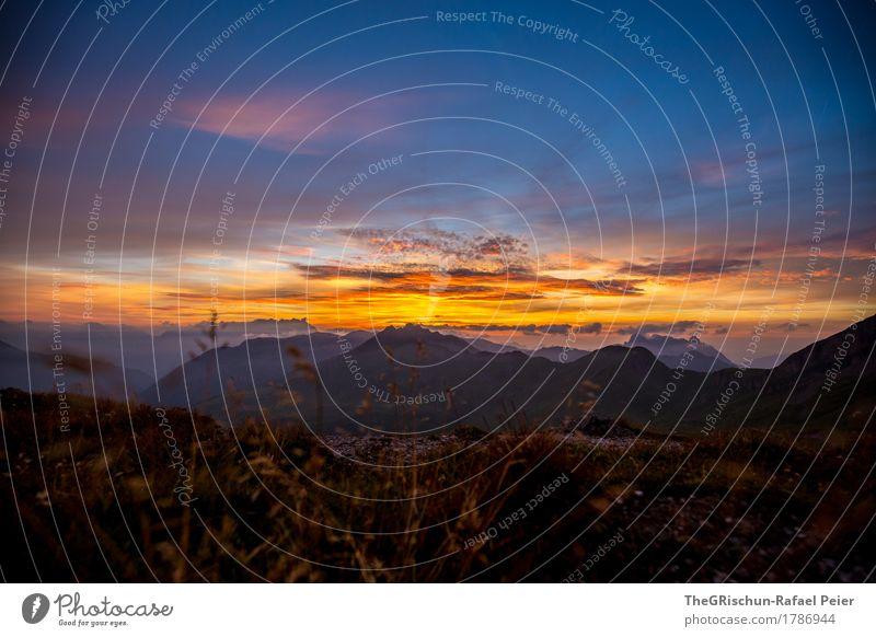 Abendstimmung Umwelt Natur Landschaft blau mehrfarbig gelb gold orange rosa schwarz Schweiz Glarner Alpen Berge u. Gebirge Gipfel Gras Stimmung Abenddämmerung