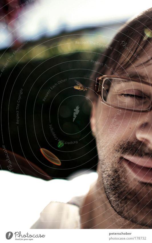 Wespe Mensch Sommer Gesicht Tier Garten Angst lustig Erwachsene maskulin fliegen gefährlich Brille bedrohlich Kontakt Duft Lächeln