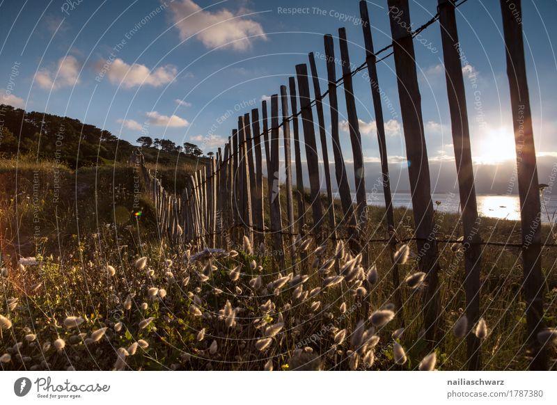 Sonnenuntergang am Strand in der Bretagne Meer Umwelt Natur Landschaft Himmel Sommer Pflanze Gras Sträucher Wildpflanze Küste Unendlichkeit natürlich Stimmung