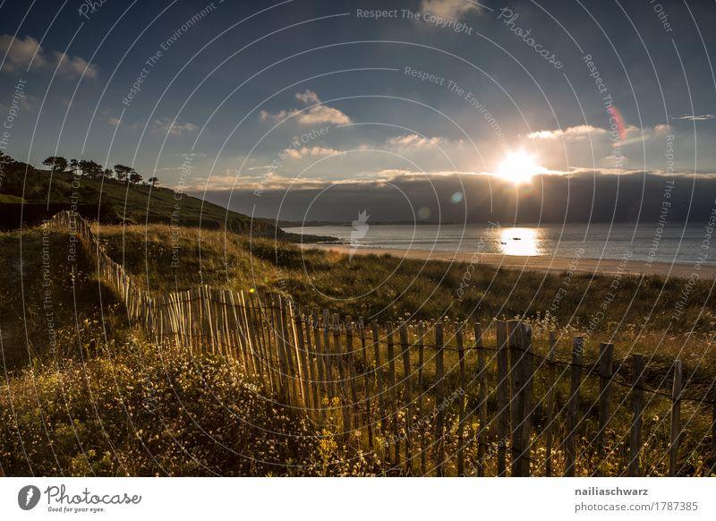 Sonnenuntergang am Strand in der Bretagne Meer Landschaft Horizont Sommer Herbst Schönes Wetter Pflanze Gras Küste Atlantik Zaun Holzzaun natürlich schön