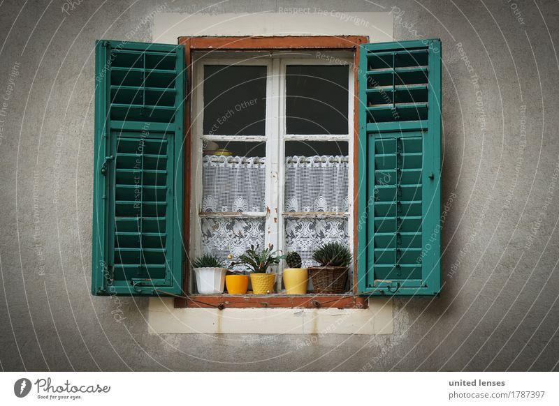 LO# Fenstergrün Kunst Kunstwerk ästhetisch Autofenster Fensterscheibe Fensterladen Fensterbrett Fensterblick Fensterkreuz Fensterrahmen offen Tradition Deutsch