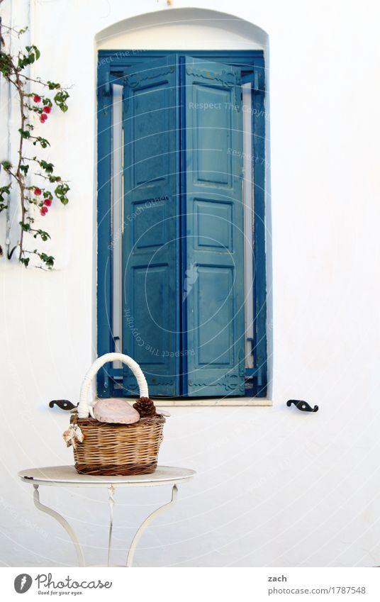 geschlossen Tisch Pflanze Insel Siphnos Sifnos Kykladen Griechenland Dorf Kleinstadt Altstadt Haus Mauer Wand Fassade Terrasse Fenster Fensterladen Korb