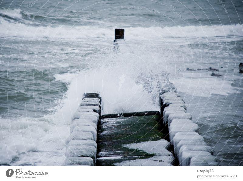 Kalte See Umwelt Wasser Winter Unwetter Wind Eis Frost Wellen Küste Strand Ostsee Meer Bewegung Einsamkeit kalt Klima Kraft Holzpfahl Gischt Eiszapfen