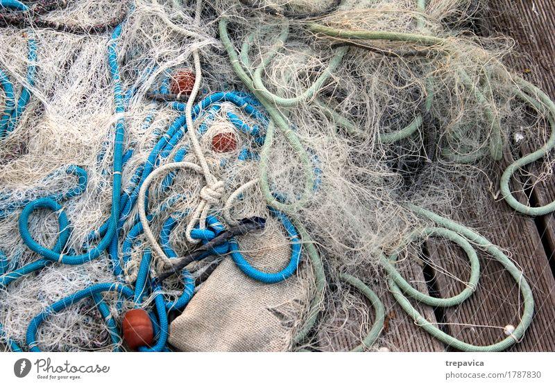 netz Fisch Meeresfrüchte Freizeit & Hobby Angeln Ferien & Urlaub & Reisen Tourismus Abenteuer Sommer Insel Natur Wasser Küste Seeufer Flussufer Netz maritim