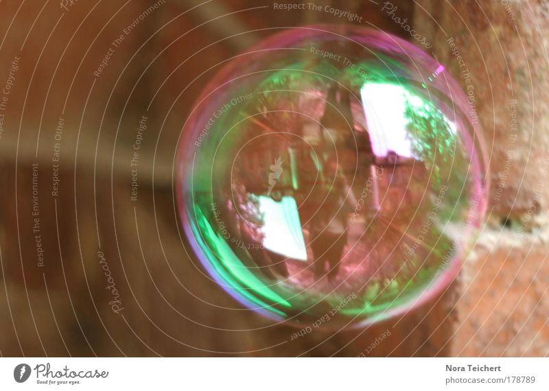 Freund Blase. Farbfoto Gedeckte Farben Außenaufnahme Nahaufnahme Detailaufnahme Experiment abstrakt Menschenleer Tag Schatten Kontrast Unschärfe