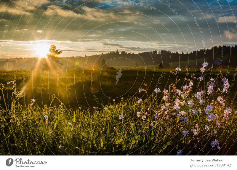 Sonnenaufgang über Hügeln Erholung Freiheit Berge u. Gebirge Himmel Wolken Wiese Dorf Schornstein Gefühle Vertrauen Warmherzigkeit Liebe Treue Romantik Wahrheit