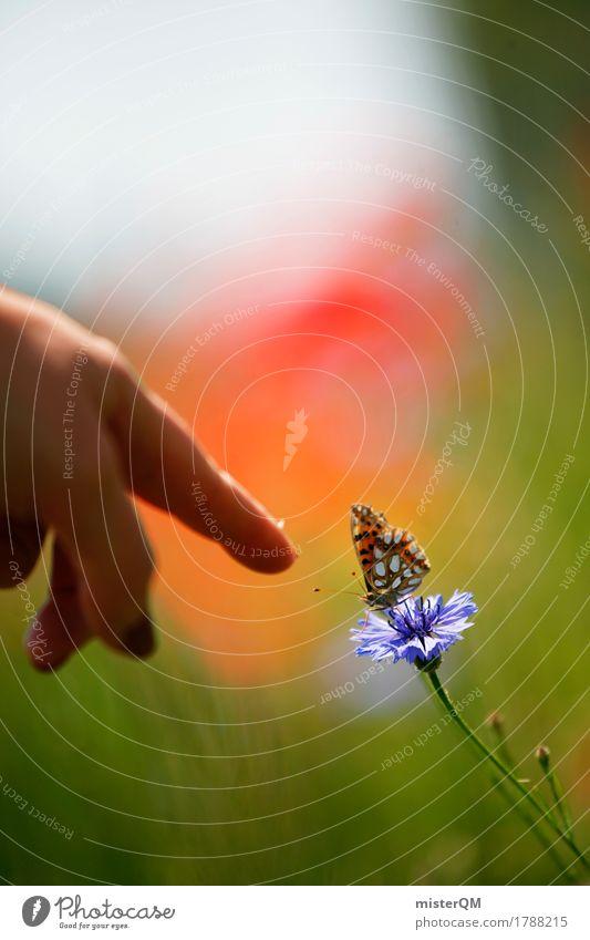 Schau mal! Natur Pflanze Hand Landschaft Tier Umwelt Blüte fliegen ästhetisch Flügel Blühend zeigen Schmetterling Leichtigkeit leicht Zeigefinger