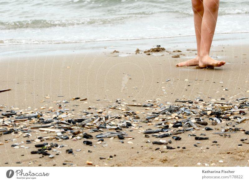 On the beach Leben Beine Fuß 1 Mensch Umwelt Natur Erde Sand Wasser Sommer Küste Strand Meer Fußspur braun schwarz weiß Muschel Tanzen Tag wellig