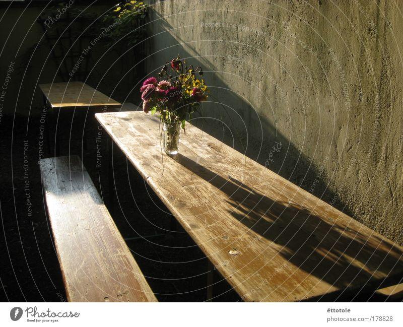 blümerant ruhig Wand Garten Holz Mauer Feste & Feiern Glas Beton Dekoration & Verzierung Blumenstrauß