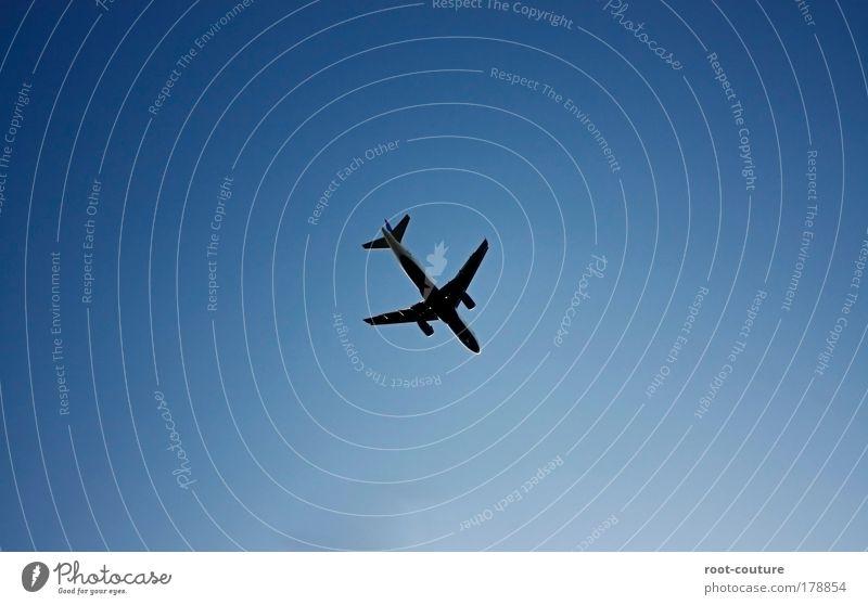 Der [Flug] un so n [Zeug]s Himmel Sommer Schönes Wetter Luftverkehr Flugzeug Passagierflugzeug Metall Verkehrszeichen Ferien & Urlaub & Reisen hoch blau