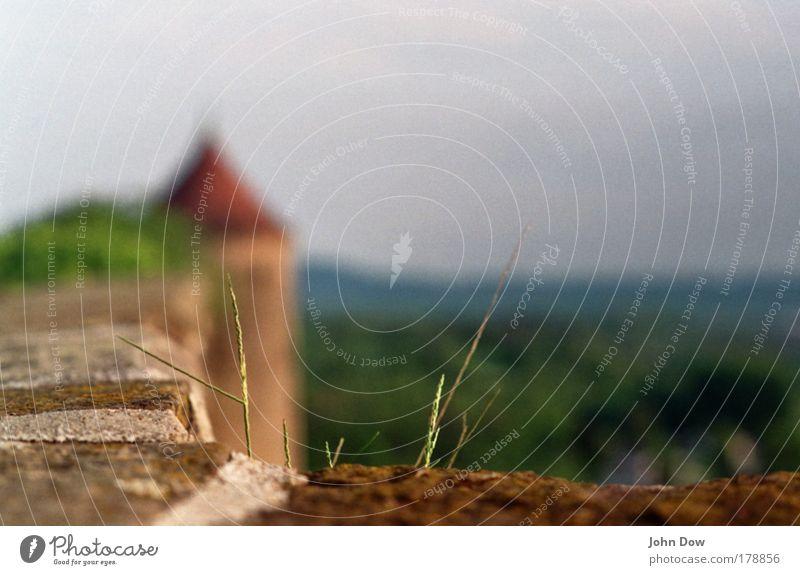 Auf der Mauer, auf der Lauer alt Ferne Wand Gras Landschaft Horizont hoch Ausflug Wachstum Aussicht Sträucher Dach Turm dünn