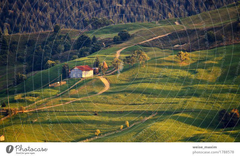 Ländliche Szene Septembers in den Karpatenbergen. Natur Sommer grün Baum Landschaft Haus Wald Berge u. Gebirge Umwelt Straße Wiese Herbst natürlich Gras Erde