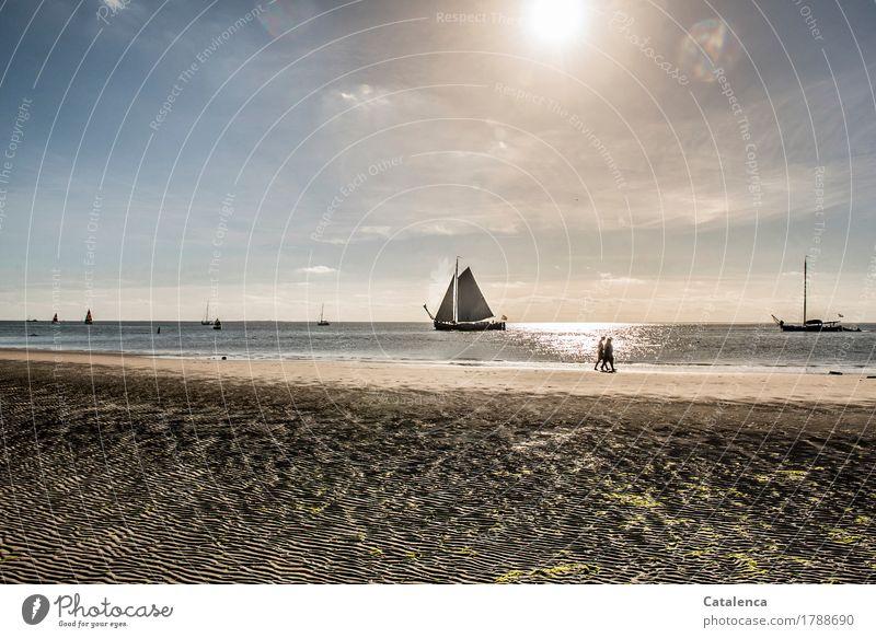 Auslaufen Segeln Ferien & Urlaub & Reisen Strand Mensch androgyn 2 Landschaft Sand Wasser Wolkenloser Himmel Sonne Sommer Nordsee Wattenmeer Segelschiffe