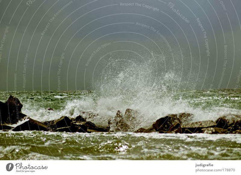 Ostsee Farbfoto Außenaufnahme Tag Umwelt Natur Landschaft Himmel Wetter Unwetter Sturm Wellen Küste Meer bedrohlich dunkel wild Stimmung Kraft Endzeitstimmung