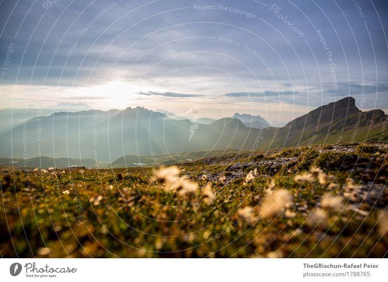 Stimmung Umwelt Natur Landschaft blau braun grau grün Berge u. Gebirge Schweiz Alpen Aussicht Panorama (Aussicht) Gras Pflanze Erde Stein Gipfel Sonne