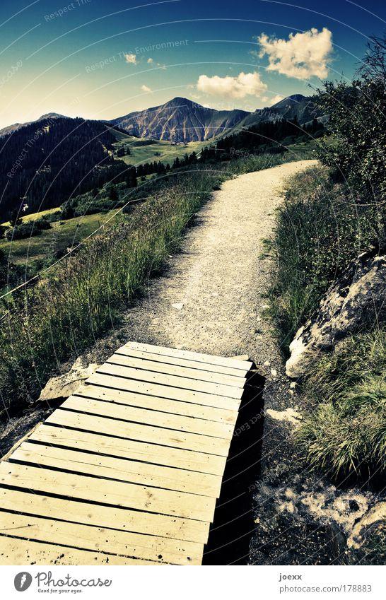 Holzweg Natur Wasser Himmel Pflanze Sommer Brücke Ferien & Urlaub & Reisen ruhig Berge u. Gebirge Wege & Pfade Landschaft laufen Horizont Erde