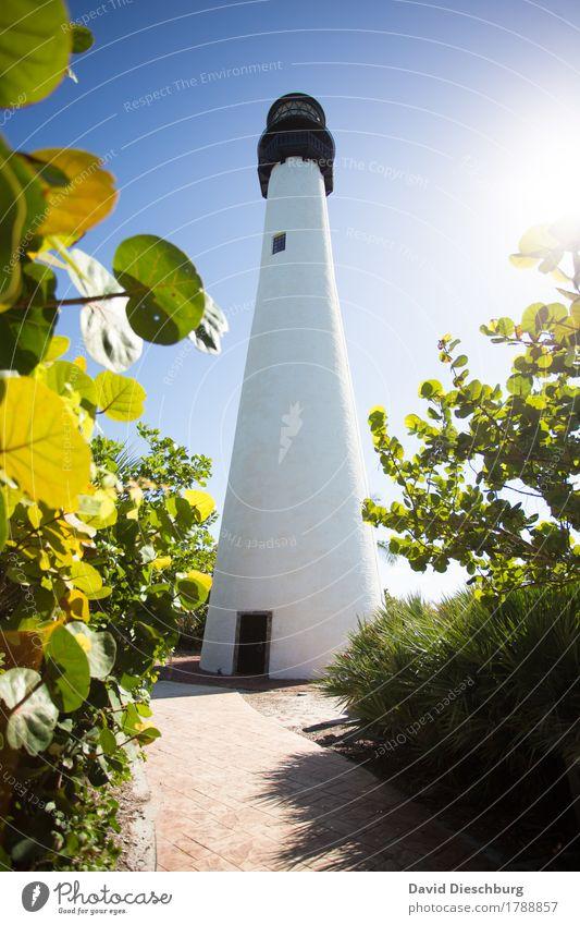 Lighthouse Ferien & Urlaub & Reisen Pflanze blau Sommer grün weiß Baum Landschaft Meer Blatt Ferne schwarz gelb Frühling Küste Tourismus