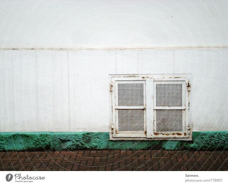meine Stadt Haus Fenster Wand Wege & Pfade Mauer dreckig Fassade trist Vergänglichkeit Verkehrswege Rost Langeweile Fernweh Pflastersteine Kellerfenster