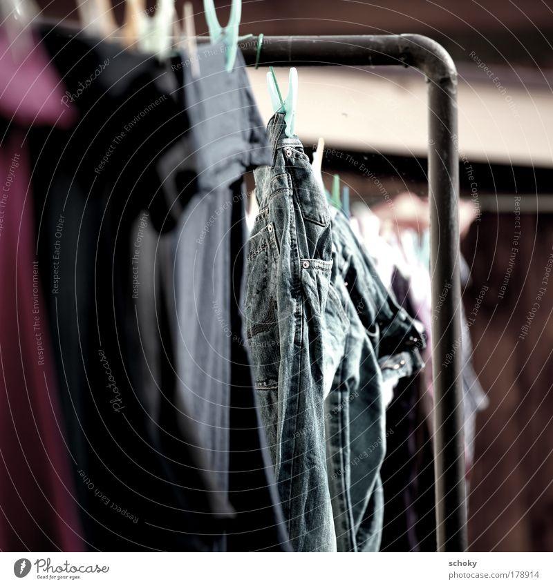 cool abhängen blau braun violett Reinigen Wäsche waschen trocknen Wäscheleine Wäscheklammern
