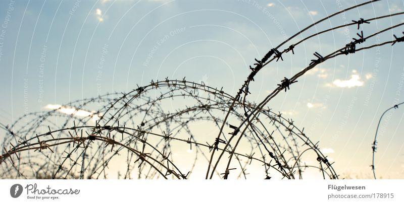 Traumberuf Drahtzieher Himmel Arbeit & Erwerbstätigkeit Freiheit frei Lifestyle Frieden Ende bedrohlich Freizeit & Hobby Schutz Beruf fangen Zaun Krieg